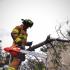 ¿Cuándo los Bomberos intervienen los árboles?